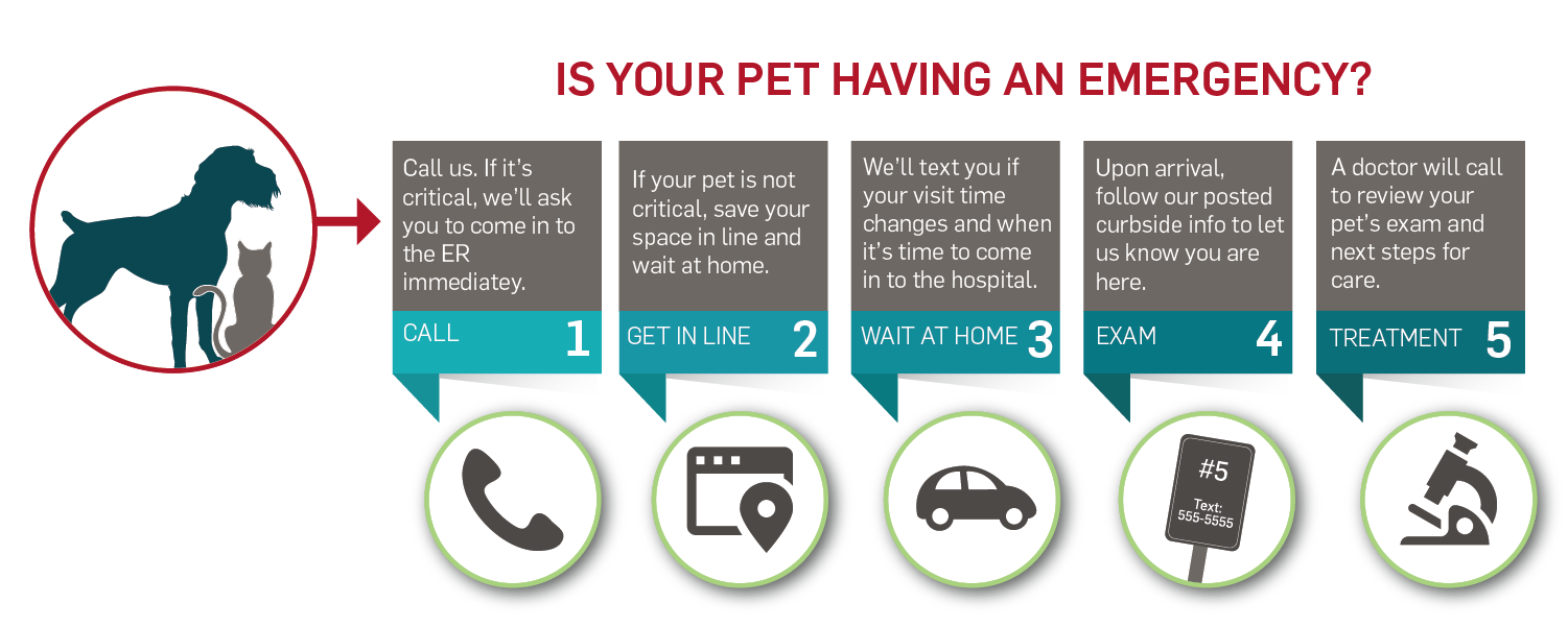 Get in line for veterinary emergency care - Click the link and save your spot